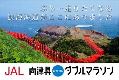 JAL向津具ダブルマラソン.jpg